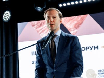 Денис Мантуров поддержал введение частной собственности на лес